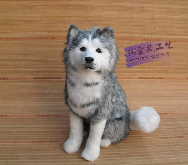 new simulation sitting husky toy resin and fur husky dog model doll gift about 22x10x28cm 0724 big sitting simulation white cat model plastic