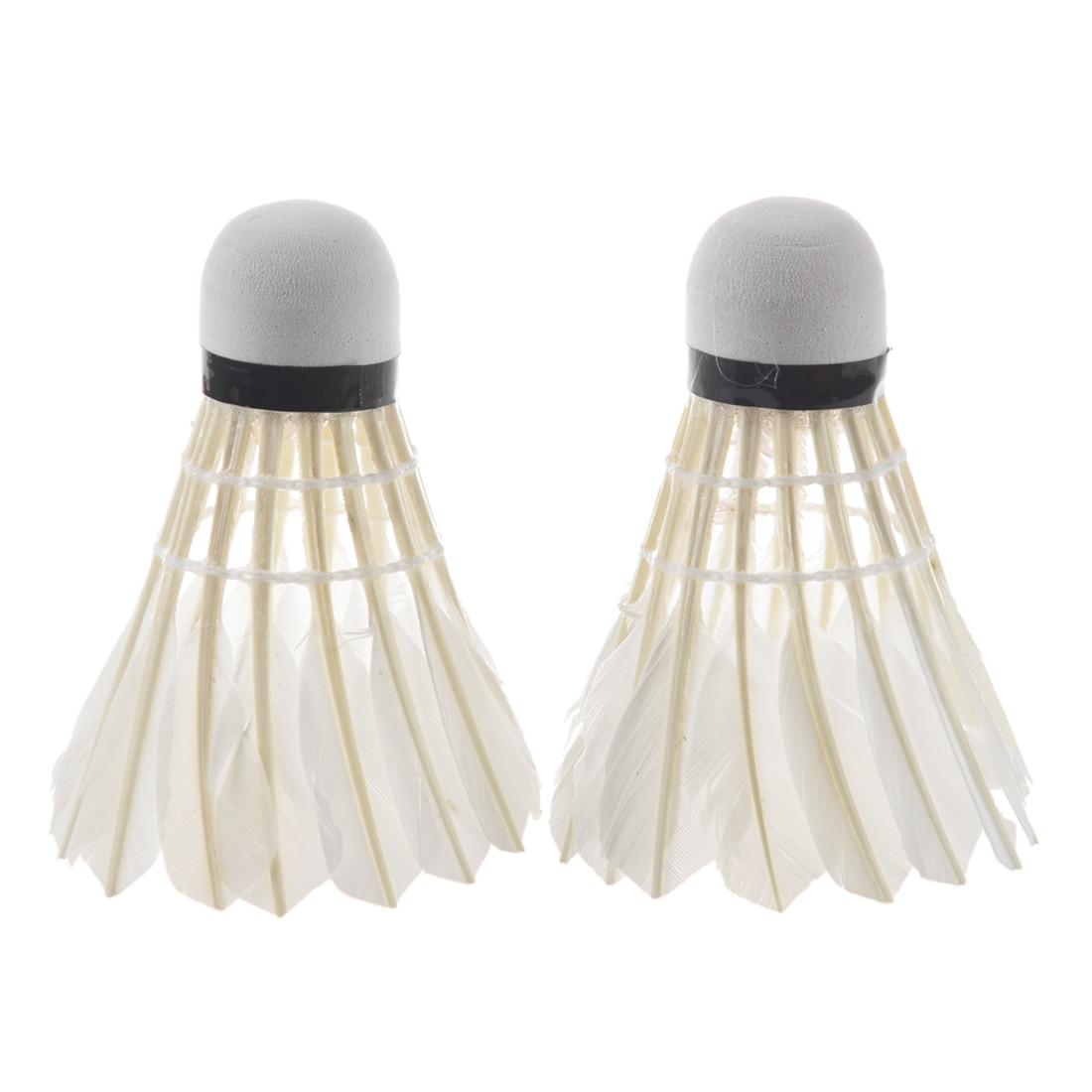 LED Badminton Light