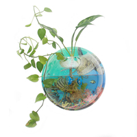 Plant Colored background Wall Hanging Bubble Vase flower pot Planter Aquarium Bowl Fish Tank Home Decoration