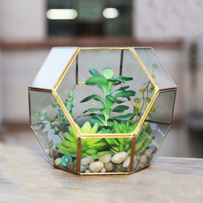 Terrarium-Box Jewelry Crafts Tabletop Succulent-Plant-Box Home-Decoration Gift Micro