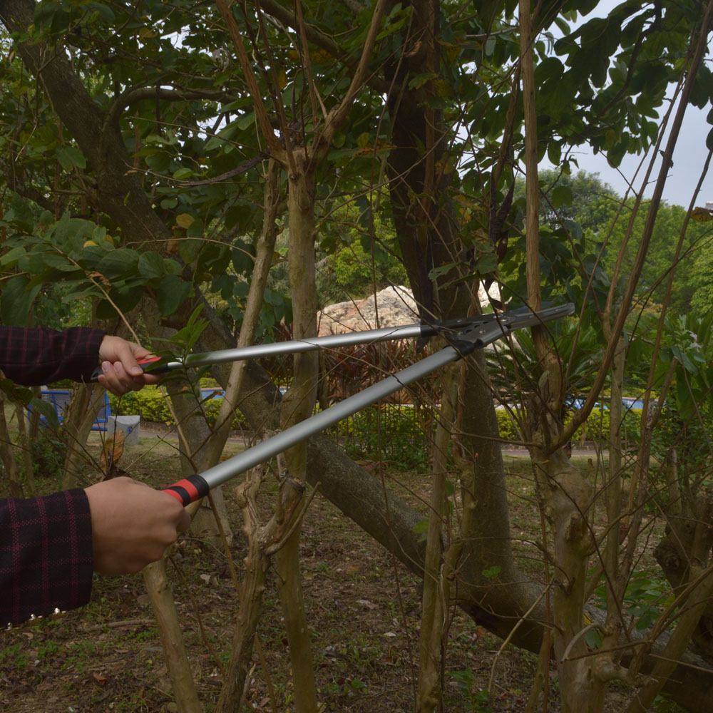 Aliexpress.com : Buy New Loppers Rough pruning high branches pruning ...
