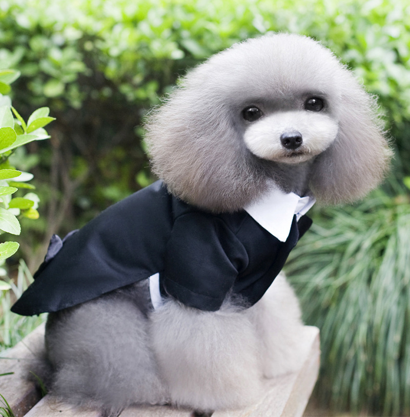 Black Bow Tie Pet Dogs Costume Gentleman Suit Formal Party Wedding Coat Jacket Clothes For Dog Groom