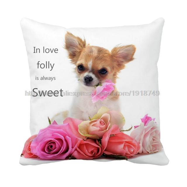 In Love Folly Is Always Sweet And Dog Chihuahua With Pink Flower
