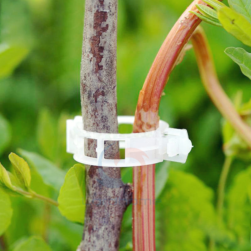 200pcs Tomato and Veggie Garden Plant Support Clips for Trellis Twine Greenhouse