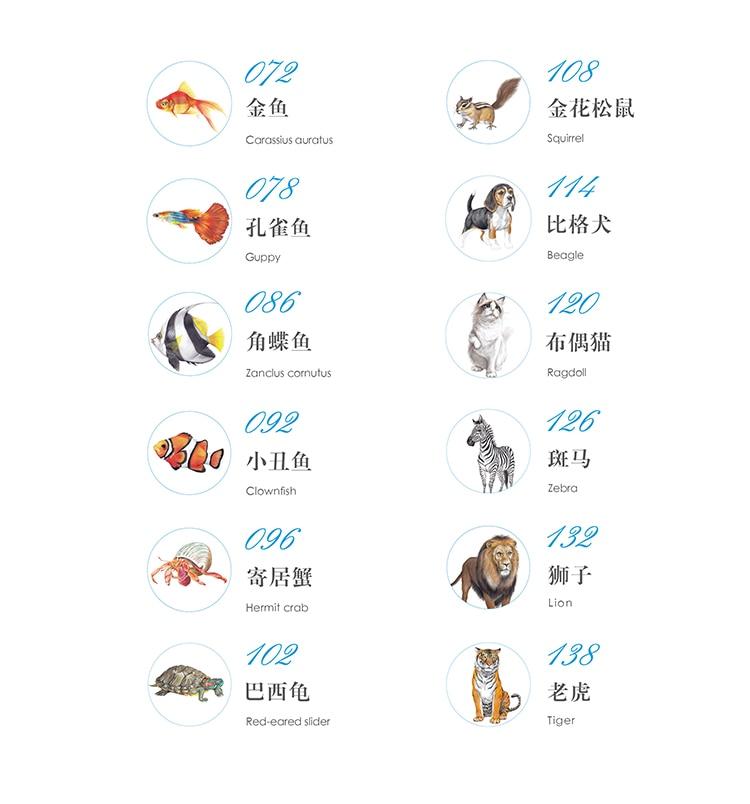draw animals book