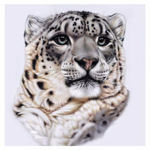hot deal buy 5d diy diamond painting leopard full square diamond embroidery cross stitch black spots leopard needlework home decorative
