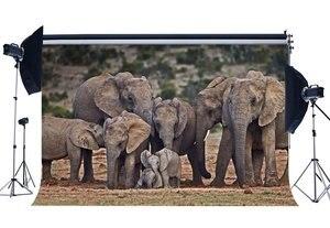 Image 1 - Toile de fond éléphant Nature paysage Jungle forêt décors heureux fête des mères doux amour fond
