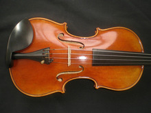 Nice Quality Painted Violin with Nice pattern European Spruce and Maple with Ebony Accessories 4/4