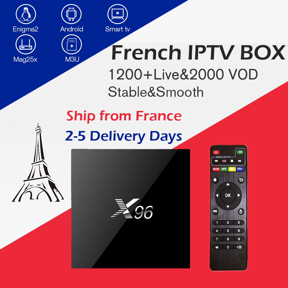 Arabic French IPTV Box X96 2G16G Amlogic S905X android tv box 1200 channels VOD For Belgium