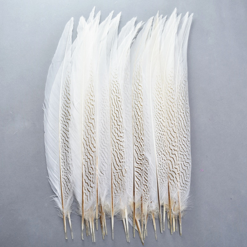 Wholesale Natural Silver Pheasant Tail Feathers 10 80CM White Pheasant Feathers for Crafts Costume Silver Chicken Feathers Plume|Feather|   - AliExpress