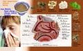 Ingredientes A Base de Hierbas naturales para la Prevención de La Gripe y el Resfriado Común, dejar de Correr Nariz y Matar Las Bacterias Frías