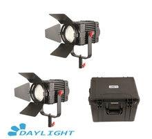 2 Pcs CAME TV Boltzen 100w פרנל Fanless Focusable LED אור יום ערכת Led וידאו אור