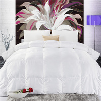 High Quality Warm Duck Down Duvet Full size /Queen size /King size Solid Color Quilt Winter White Feather Bed Comforter