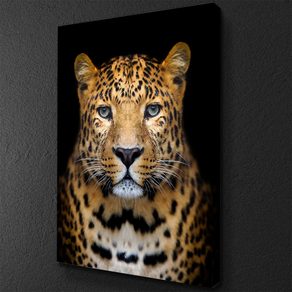Beautiful_Cheetah_Vertical_copy_2000x