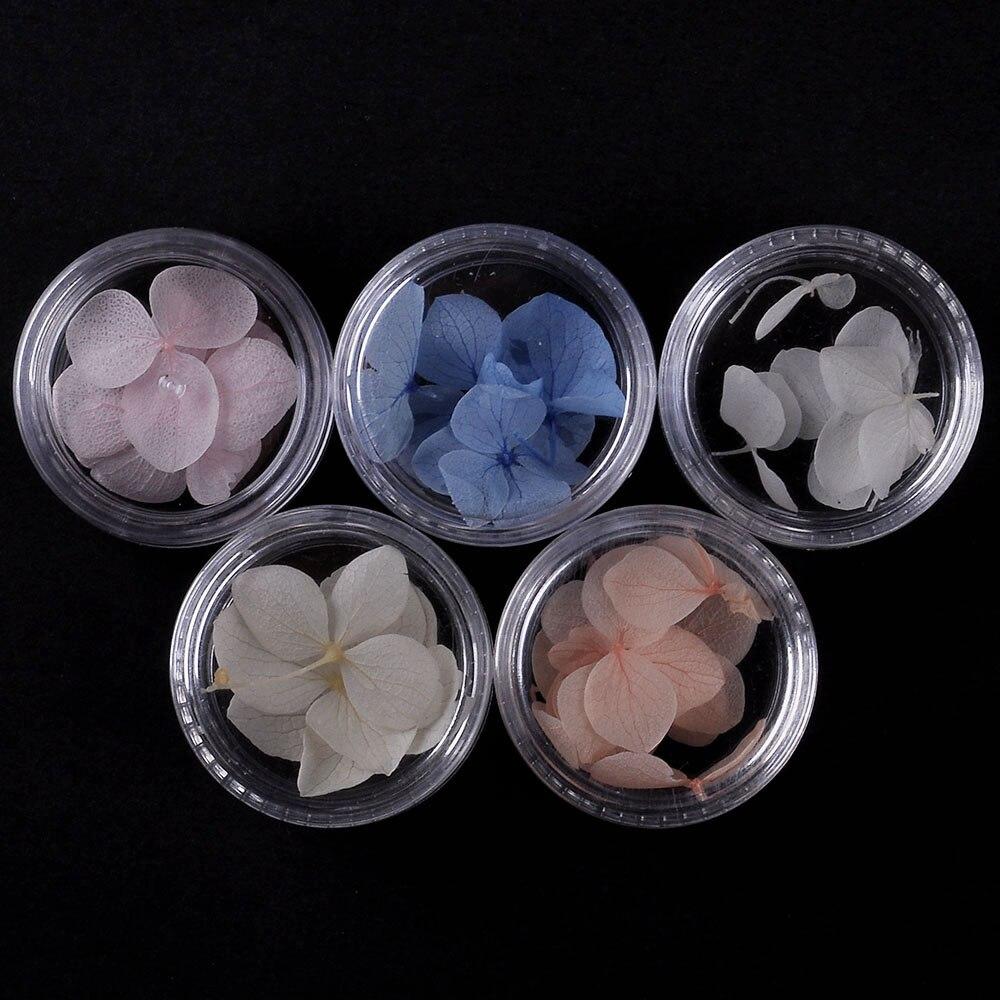 5 colors Purple flower petals 3Pcs/Box Colorful Dried Flower 3D Nail Decoration Preserved Flower Manicure Nail Art Decoration 3d ручка feizerg f001 purple fp001