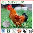 Фабрика питания курица хряща коллагена порошок 400 г