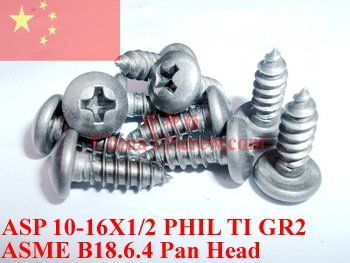 Titanium screws 10x1/2 Pan Head 2# Phillis Driver Ti GR2 Polished 50 pcs