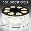 LED strip 5050 SMD DC 12V flexible light 60LED/m,5m 300LED,White,White warm,Blue,Green,Red,Yellow +Free shipping