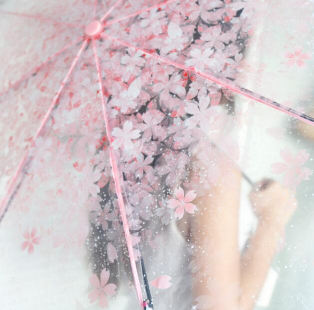 Ыстық сән Мөлдір ашық қолшатыр Шие - Үйге арналған тауарлар - фото 3