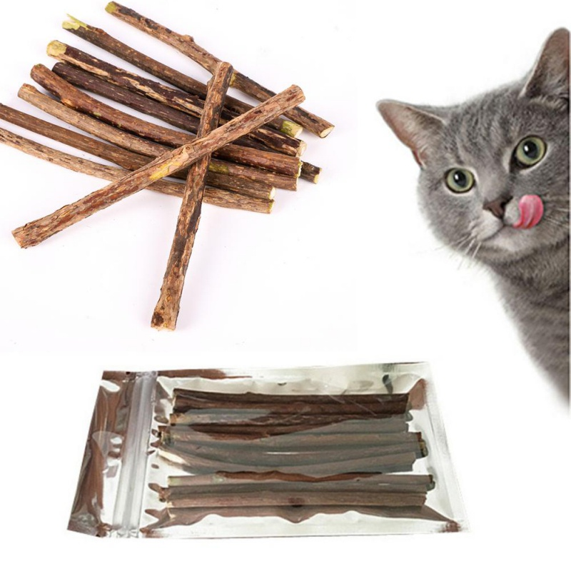 10 15 20pcs Lot Pure Natural Catnip Pet Cat Toy Molar Toothpaste Branch Cleaning Teeth Silvervine