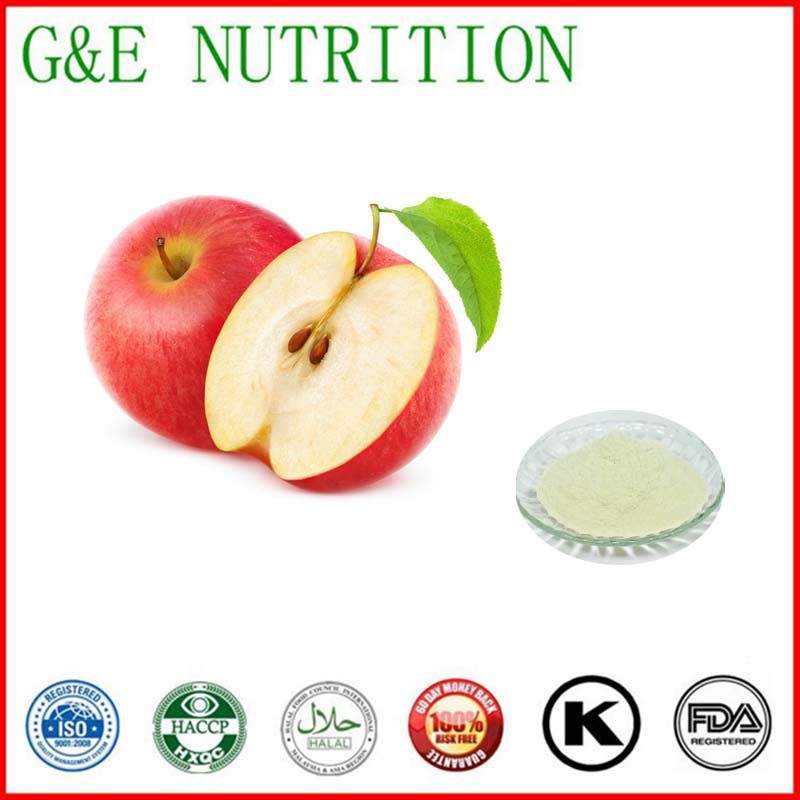 High quality and hot sale Apple extract/ Apple Cider Vinegar Powder 800g