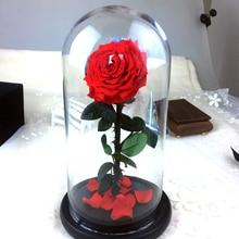 Красивая Стеклянная Крышка Свежий Сохранились Роза Для Свадебных Центральные Главная Декоративные Цветы