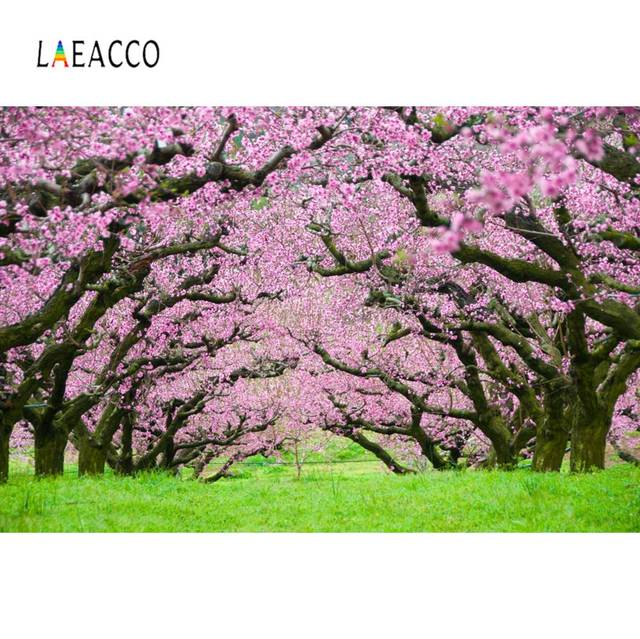 Laeacco Spring Pink Blossom Old Tree Green Grass Way Party Natural View Photo Backgrounds Photo Backdrops For Photo Studio