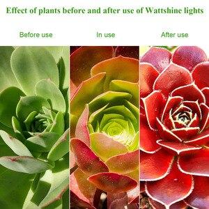 Image 5 - לגדול אור 300 W 450 W ספקטרום מלא מקורה צמח מנורת לצמחים Vegs הידרופוני מערכת צמח אור עבור מקורה צמחים כפול שבב