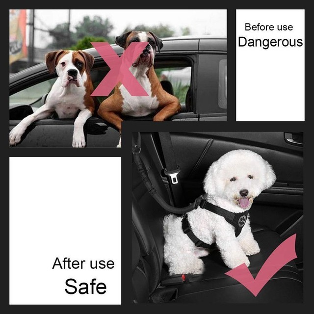 Adjustable Safety Belt