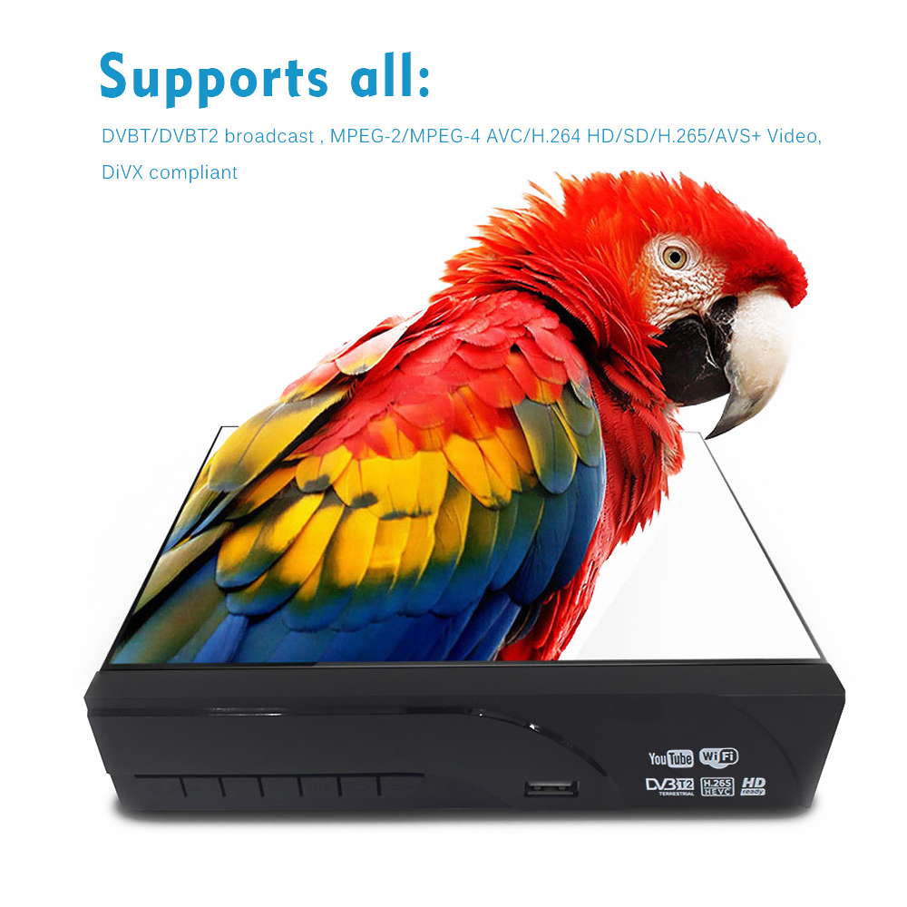 2019 dvb tv box DVB T2 with TV Antenna digital terrestrial tv receiver  H 265 HD support dobly AC3 youtube dvb t2 8943 tv tuner
