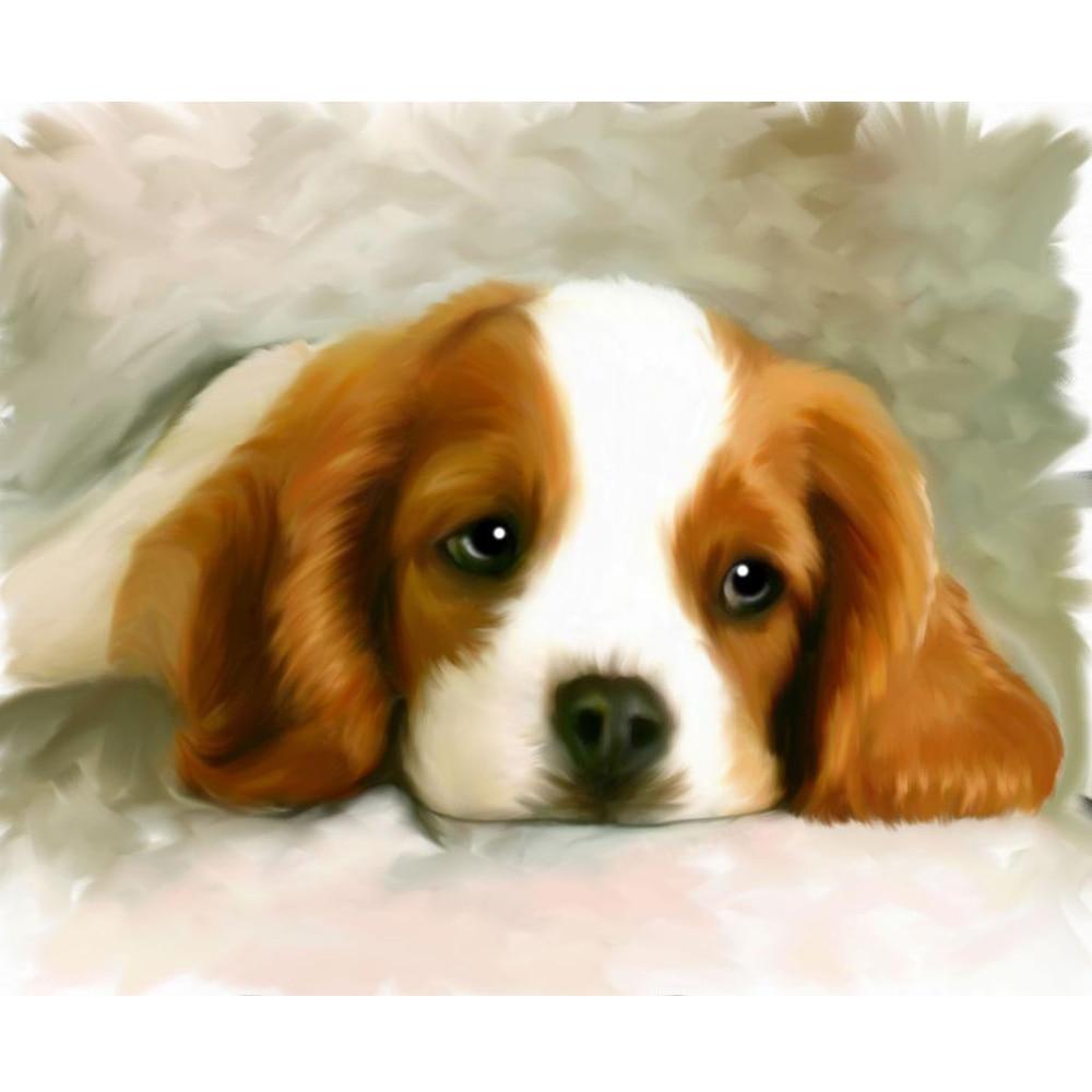 Diamant schilderij, hond, vol vierkant, hars kristal, handwerken, 5d - Kunsten, ambachten en naaien