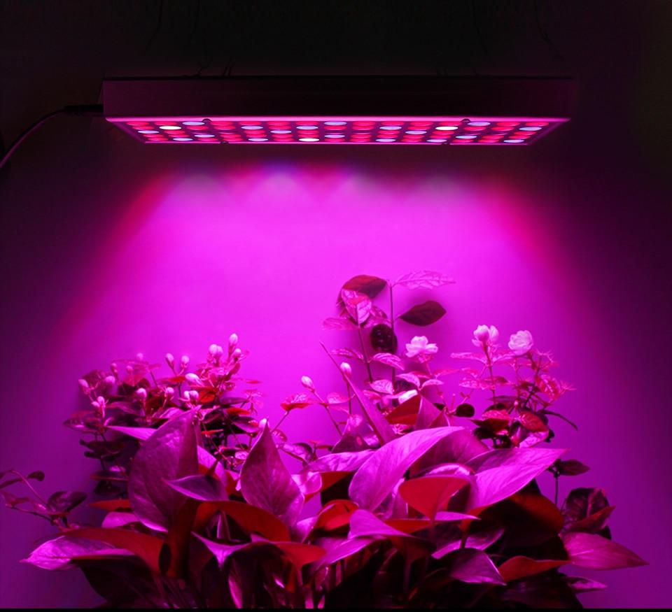 LED Plant Grow Light Full Spectrum 45W AC 85-265V Phyto Lamp for Plants Flower Seedlings 144LEDs Indoor Grow Light Hanger Kit (1)