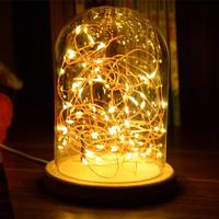 Glass Dome Night Light Bell Jar Display Wooden Base LED Warm White Light Bedside Table Lamp