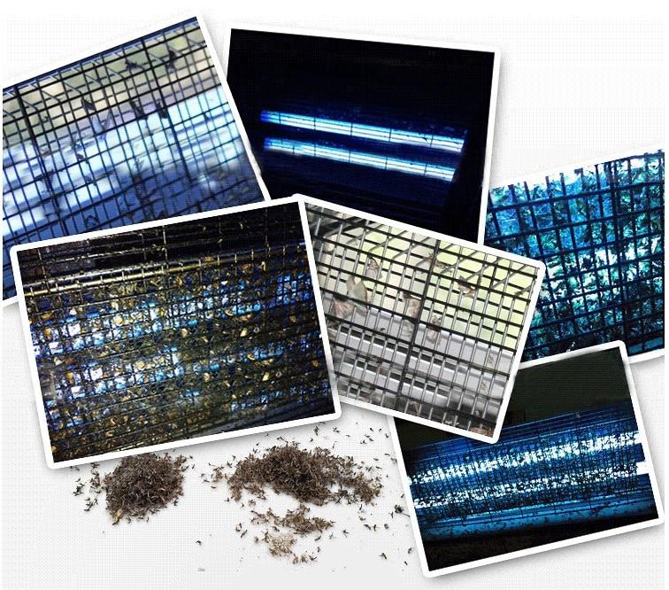 Image 5 - Repelente de mosquitos LED fotocatalizador para el hogar, matamosquitos, matamosquitosLámparas matamosquitos   -