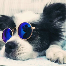 Small Dogs Sunglasses Cats Glasses Products For Pet Supplies Photos Props Accessories akcesoria dla psa gafas perro
