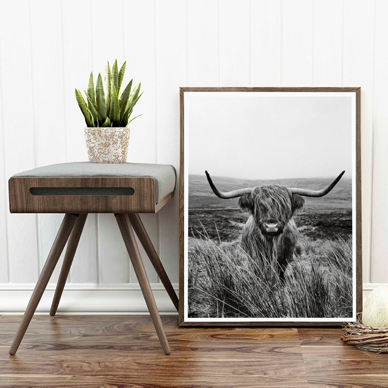 Highland Cow Canvas Art Picture Home Decoration