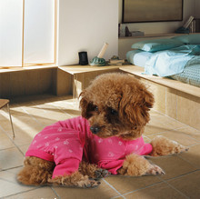 Pajamas / Jump Suit for Small Dogs