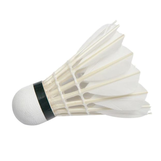 Outdoor Sports Athletic Practice Badminton Shuttlecocks 6pcs White