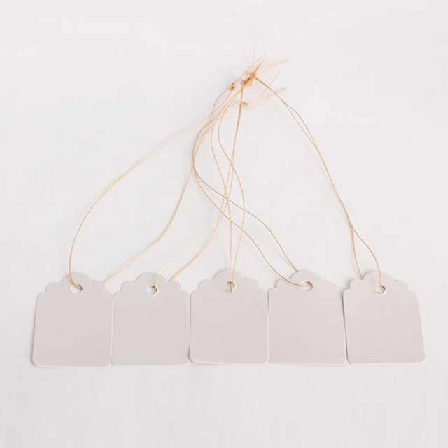 100Pcs/lot Plants Hang Tag Labels Seedling Garden Flower Pot Plastic Tags Number Plate Hanging Reusable PVC Garden Tools