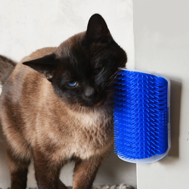 Pet Products For Cats Brush Corner Cat Massage Self Groomer Comb Brush With Catnip Wholesale-in