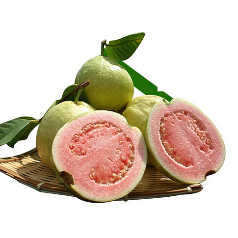 Online Buy Wholesale Guava Fruit From China Guava Fruit