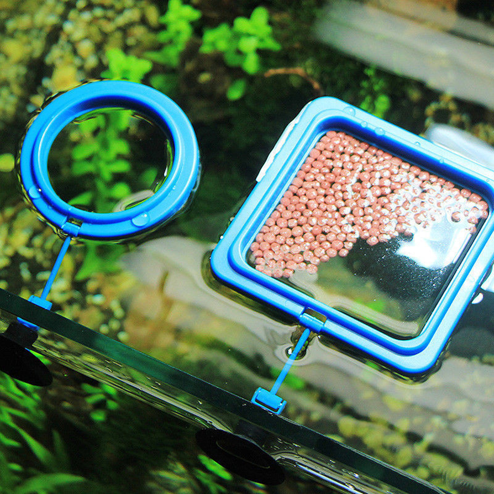 New Aquarium Feeding Ring Fish Tank Station Floating Food Tray Feeder Square Circle Accessory Water Plant Buoyancy Suction Cup