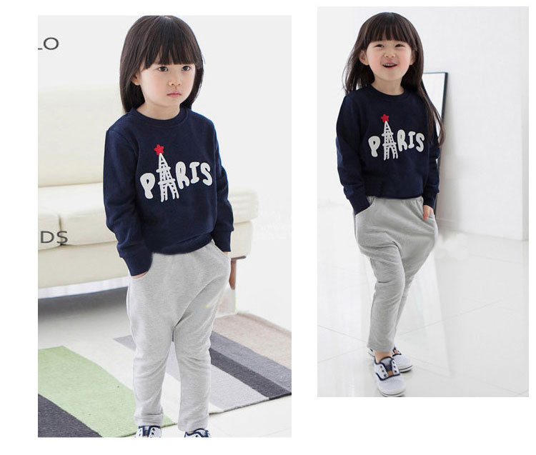 2014 autumn Clothing Sets baby girls apparel long sleeved shirt and pants casual suit kid's clothing set for baby girl