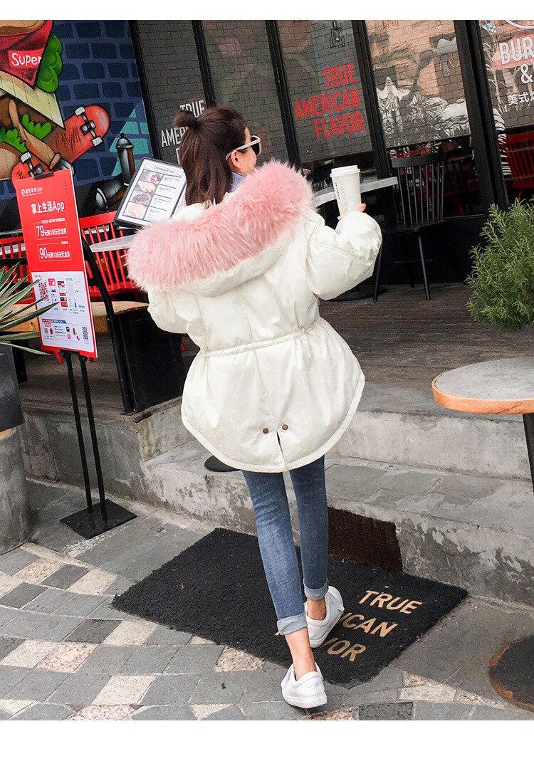 Raton Mode Coton Épaissir Nouveau Chaud Femmes Fourrure De Blanc Veste Manteaux Picture Capuche Rembourré as Col Grand Picture As Collier Laveur Hiver wBdTdXq6rx