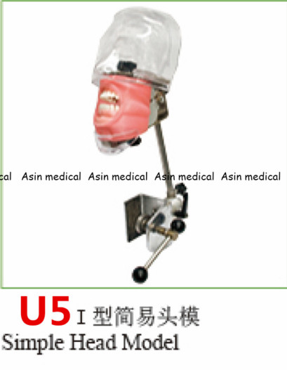 Simple Head model Apply to the oral cavity simulation training fixed on the dental chair for any position practice stewart robinson simulation the practice of model development and use