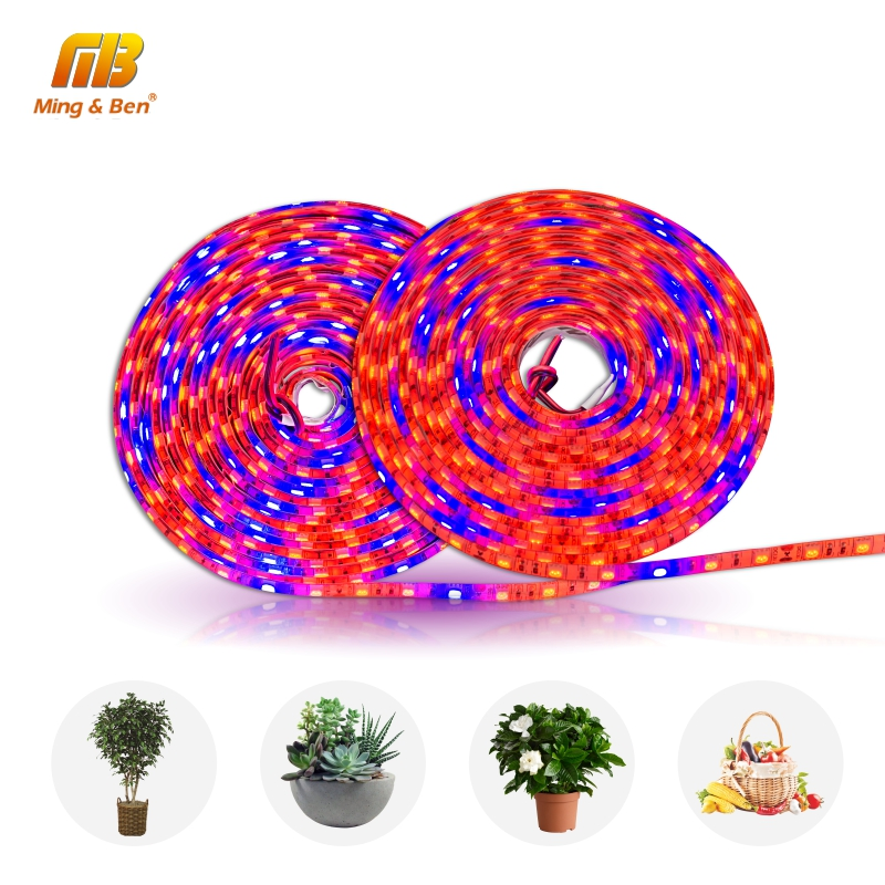 5M LED Grow Strip Full Spectrum S5050 3/4/5 Red 1 Blue IP65 Phyto Light For Greenhouse Hydroponic Plant Growing DC 12V Fitolamp