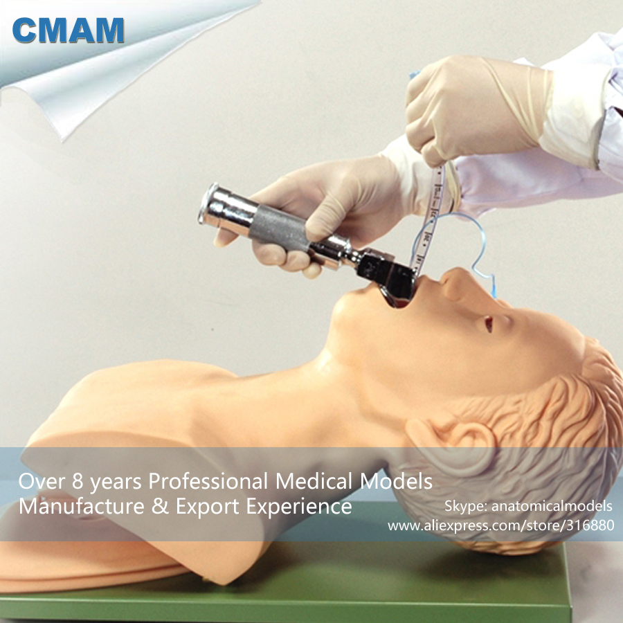 12421 CMAM-CPR01 Electronic Tracheal Intubation Training Simulator Model, CMAM anatomicalmodels iso electronic tracheal intubation training manikin oral and nasal intubation trainer