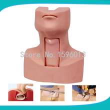 Advanced Thyrocricocentesis Tracheostomy simulator,Cricothyrotomy, Tracheostomy Training Simulator model