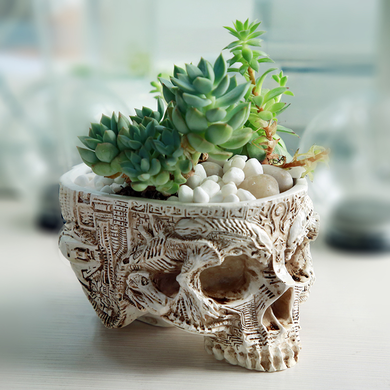 Hand Carved Skull Flower Pot Human Skull Bone Bowl Home Garden Decor Halloween Decoration title=