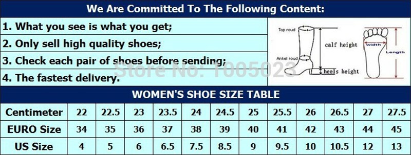 Women Ladies Shoes Hot Fashion Pointed Toe High Heels Sexy Red Bottoms Wedding Shoes Women\'s Pumps HSB03 (9)